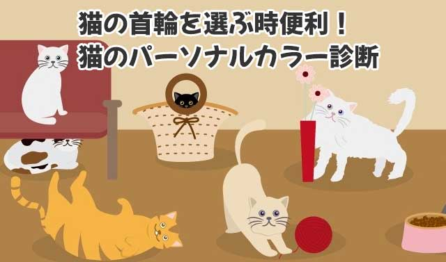 猫のパーソナルカラー診断